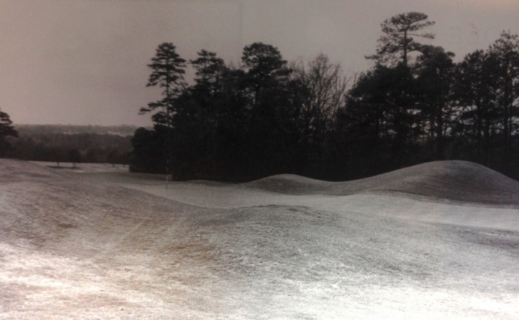 augusta-8-punchbowl-730x450