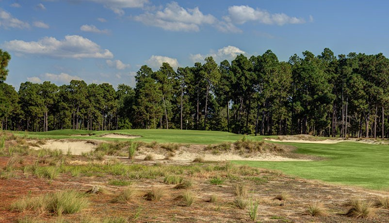 Pinehurst #2 Crowned Green
