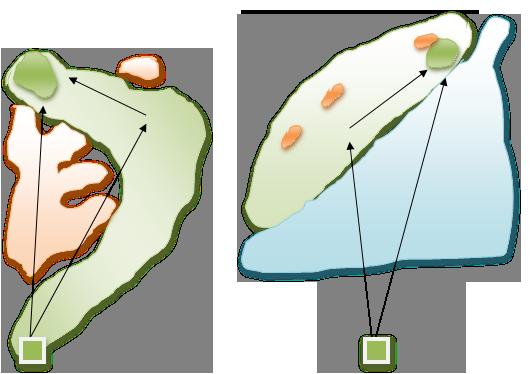 左:サハラホール#2/右:ケープホール#14