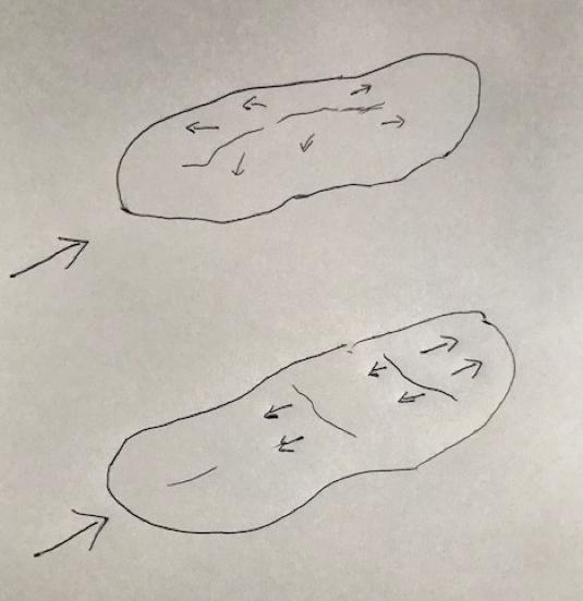 図上)縦コンター  図下)横コンター
