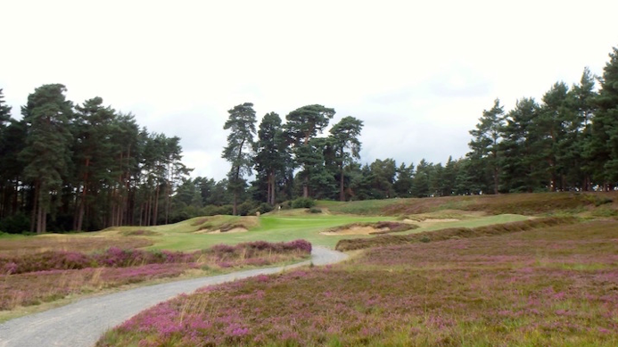 Swinley Forest GC 英国  Colt & Alison 1910