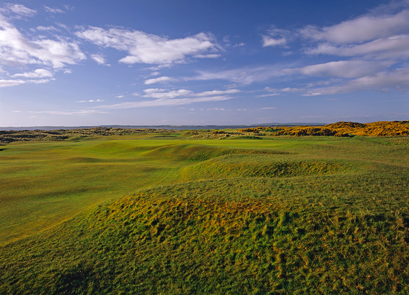 Royal Dornoch GC 14番 Foxy